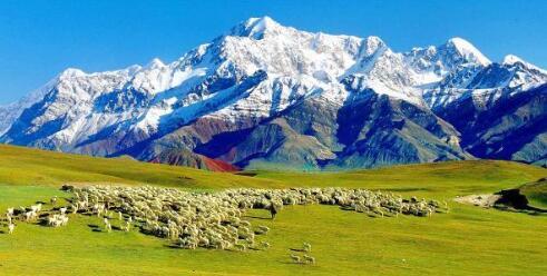 新疆南疆大环线包车价格表