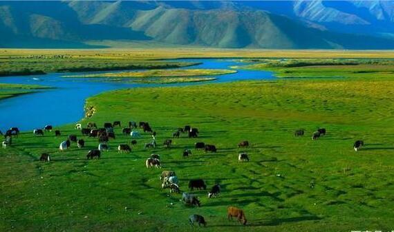 请问乌鲁木齐租车去北疆环线在哪里租?