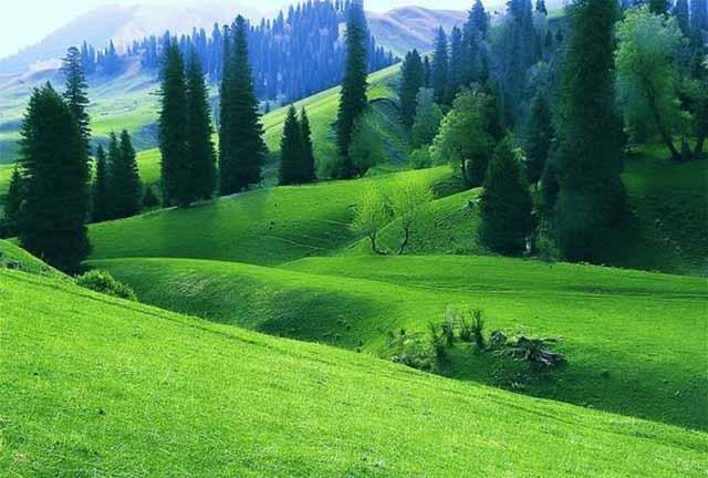 新疆自驾游黄金线路带你穿越沙漠、草原与雪山