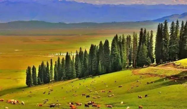 史上最全新疆自驾游公路里程表出炉,旅游必备,赶紧收藏!
