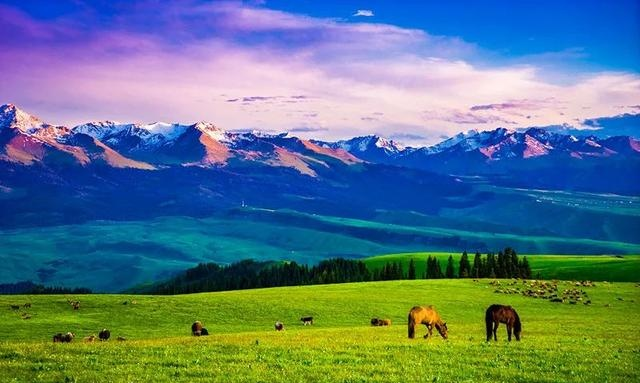 新疆自驾游攻略,人在途中,感受大美新疆