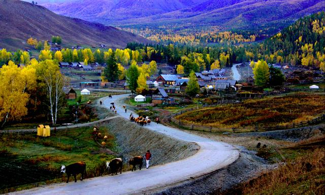 新疆包车旅游大约花销多少钱以及包车出行攻略