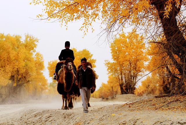 南疆秘藏的3条自驾天路,隐秘绝美,比独库公路更加野性