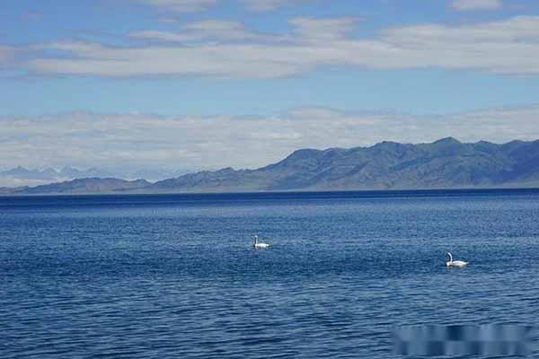 夏天的赛里木湖,是每位新疆旅行者的梦,适合自驾或包车前往