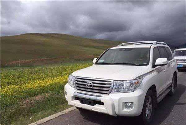 一家三口新疆包车看薰衣草玩安集海大峡谷大概得花多少钱呢?